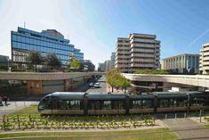 Les villes françaises, la ville la plus proche de chez moi : Bordeaux - cm1 cm2 - Les crayons de Delf