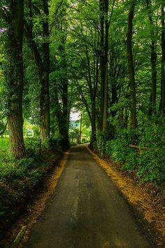 Forest Lane, Liege, Belgium photo via himynameis