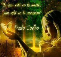 Coelho - MEDICO HOMEOPATA IRIOLOGO,ACUPUNTURA,FLORES BACH,PSICOTERAPIA- BOLIVAR…