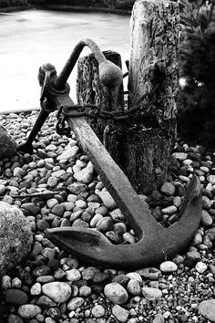 Anchor Art Print by Alison Tomich. All prints are professionally printed, packaged, and shipped within 3 - 4 business days. Choose from multiple sizes and hundreds of frame and mat options. Black And White Aesthetic, Black N White, Black And White Pictures, White Art, Fishing Photography, Art Photography, Anchor Pictures, Anchor Art, Ship Anchor