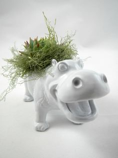 Hey, I found this really awesome Etsy listing at https://www.etsy.com/listing/117810300/white-hippo-planter-mini-modern-art