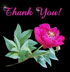 Description : thanks you animation,thanks you animation gif,thank you animation for powerpoint,thank you animation for powerpoi. Thank You Gifs, Thank You Pictures, Funny Thank You, Thank You Images, Love You Images, Thank You Quotes, Thank You Cards, Thanks Gif, Glitter Images