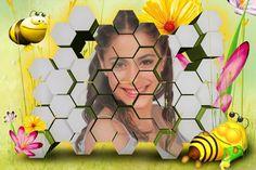 Edita tus fotos con un panal de abejas