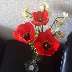 Friske blomster pynter altid 🌷 #friskeblomster #farver #farverigt…