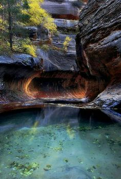 Pool of Hope. Zion National Park, Utah