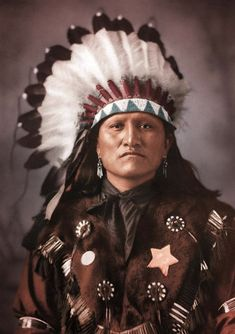 Good Horse, Dakota Chief, Photographed by D.F. Barry, (colorized)1880s.