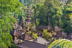 Ubud is tourist day trip magnet, the home to thousands of expats and a raw food lover's paradise. On our previous trips to Bali (we've been 9 times) we use to visit to Ubud for a day, but this time we decided to base ourselves here for about 1.5 months. Find out where we stayed and what we ate, plus plenty more handy tips for your next holiday in Ubud.