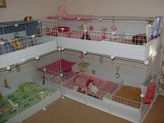 In the event you are looking for a furry companion that is not only adorable, but very easy to have, then look no further than a family pet rabbit. Diy Guinea Pig Cage, Guinea Pig House, Pet Guinea Pigs, Pet Rat Cages, C&c Cage, Guniea Pig, Indoor Rabbit, Guinea Pig Bedding, Bunny Cages