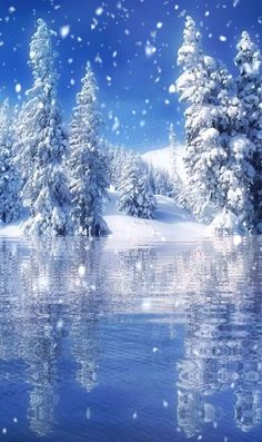 Winter Wonderland Winter SolsticeYou can find Winter scenes and more on our website. Christmas Animated Gif, Merry Christmas Animation, Merry Christmas Gif, Merry Christmas Pictures, Christmas Art, Christmas Greetings, Simple Christmas, Christmas Cookies, Winter Scenes To Paint