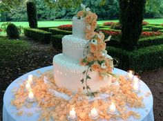 Catering: menu, bevande, personale - Matrimonio.it: la guida alle nozze