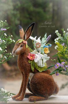 Aster by Lavender & Lark