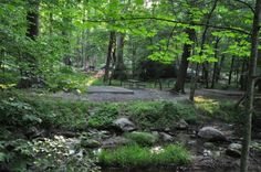 Situated in the scenic Great Smoky Mountains National Park, this campsite offers an ideal setting for camping excursions. As the largest campground in the Smokies, Elkmont is a popular destination for outdoor enthusiasts of all types.