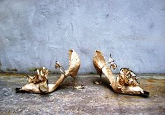 Violise Lunn - Paper Shoes