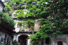Case di ringhiera sopravvissute in corso San Gottardo (Foto di Carmen Diomira Ridolfi)