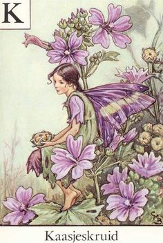 The Mallow Fairy. Vintage flower fairy art by Cicely Mary Barker. Taken from ' A Flower Fairies Alphabet'. Click through to the link to see the accompanying poem. Cicely Mary Barker, Flower Fairies, Illustrator, Mallow Flower, Fairy Pictures, Vintage Fairies, Love Fairy, Beautiful Fairies, Beautiful Flowers