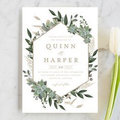 """""""Succulent Surround"""" - Wedding Invitations in Tuxedo by Susan Moyal."""