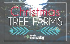 A list of the Knoxville Christmas Tree Farm locations and surrounding East Tennessee areas. Happy tree finding!