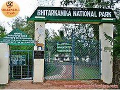 Visit Bhitarakanika National Park in Odisha, 142 kilometre distance from the capital of Orissa Bhubaneswar. see crocodile sanctuary, plan your tour with best wildlife tour packages by Shakuntala Tours and Travels, stay at luxurious hotels in Balasore, Panchalingeswar.@ http://shakuntalanivas.com/bhitarakanika.html
