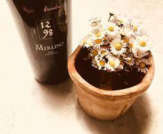 Concludere un buon pasto con il Merlino: vino fortificato da uve Lagrein. La scelta migliore per accompagnare un dessert al cioccolato! . . . #liquore #merlino #pojeresandri  #sanquiricodorcia #valdorcia #wine #tuscany #lagrein