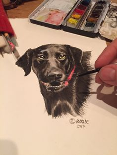 Let me create a PET PORTRAIT for you! Send me a photo of your pet, and Ill create YOUR very own Pet portrait. Created by hand ! Crafts With Pictures, Pet Portraits, Art Art, Your Pet, Create Yourself, How To Draw Hands, Pets, Painting, Painting Art
