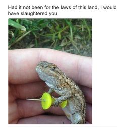 Pictures That Will Make You Laugh Until You Cry - 56
