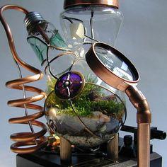 Professor Alexander's Botanical Vasculum - Steamed 300 watt Moss Terrarium