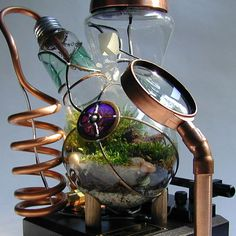 Terrarium. Suitable for the Mad Hatter.