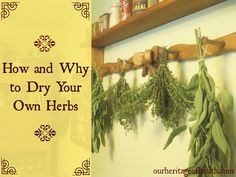 Why it's important to dry your own herbs and how to do it