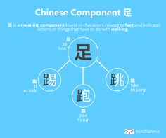 Everything you need to know about the Chinese character component 人 in an easily downloadable and sharable image