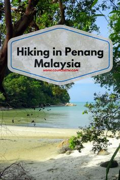 Panang National Park has one of the best hiking trails in Malaysia. A track with dense jungle rainforest, beaches and even a turtle reserve.
