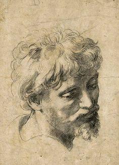 Raffaello Sanzio, Testa di giovane Apostolo.