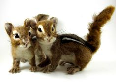 Needle Felted Art by Robin Joy Andreae: My Latest Creations