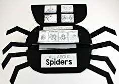 Last week I created this sweet spider then jam-packed him FULL of interactive activities all about spiders! Peek under the first top flap and bottom flap to find… Below is what you will find below the second two flaps! So much spider fun! The activities will go into a science notebook or inside of this …