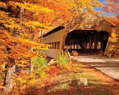 covered bridges in the fall - Google Search