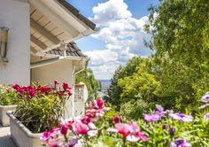Három generáció számára is alkalmas belsőépitész által tervezett házat kínálunk eladásra a Pálvölgyön.  Családi ház eladó Pálvölgy 300 m² - HomeHunters - Ingatlanok Dream Garden, Garden Design, Backyard, Landscape, Plants, Inspiration, Biblical Inspiration, Patio, Scenery