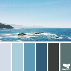 """1,825 Likes, 22 Comments - Jessica Colaluca, Design Seeds (@designseeds) on Instagram: """"today's inspiration image for { sea blues } is by @lizlangley ... thank you, Liz, for another…"""""""