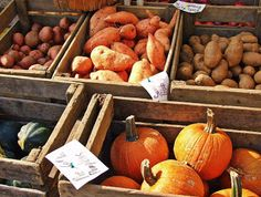 Five Fall Financial Fitness Tips