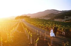 Kunde Winery Wedding