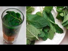 Solo un Bicchiere Ed il Tuo fegato Starà Meglio - Pulitura Naturale del fegato - YouTube