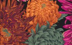 Japanese Chrysanthemum