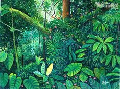 Product:Naive Painting. Title:Rainforest. Artist:Abel Vargas. Jungle Art, Haitian Art, Snake Art, Forest Painting, Nature Illustration, Tropical Art, Collaborative Art, Wild Nature, Mural Art