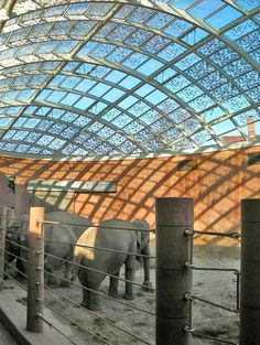 The elephant house at Copenhagen Zoo designed by Norman Foster  Partners has to be a must-see attraction for both architecture fans and animal lovers. http://www.visitcopenhagen.com/copenhagenarchitecture