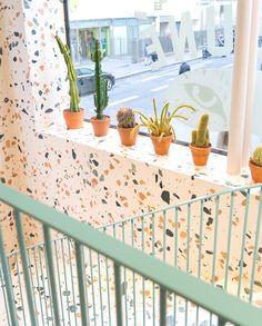 Appreciating other people's (shop's) cacti   #onmyway #maisonkitsune #urbanjunglebloggers by joelixjoelix