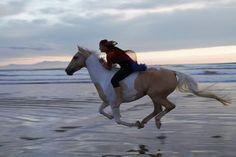 Horse riding on the beach!