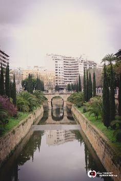 Ajuntament de Palma in Palma, Islas Baleares