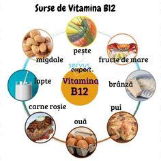Vitamin A, Vitamin B12 Benefits, Vitamin B Foods, Sources Of Vitamin B, Vegan Vitamins, Vitamins For Women, B12 Foods Vegetarian, B12 Rich Foods, Vitamin B12 Mangel