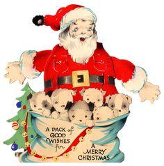 vintage santa, dogs