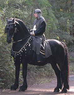 pictures of medieval horses - Google Search