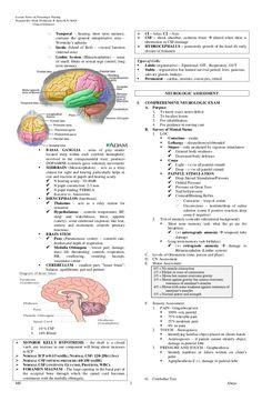 NCTRC Exam Secrets Study Guide Flashcards | Quizlet