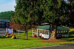 Hedgesville, West Virginia, Town Spring.